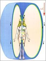 Вокруг физически плотного тела и сущности первичные материи создают изолированную устойчивую зону. Образуется защитная оболочка многоклеточного организма человека (Иллюстрация из книги Николая Левашова «Сущность и Разум»)