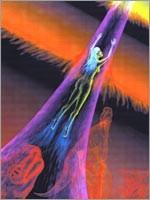 В момент смерти вся долговременная память человека становится частью общей памяти сущности, накопленной во время предыдущих воплощений. Происходит накопление эволюционного багажа сущностью (Иллюстрация из книги Николая Левашова «Сущность и Разум»)