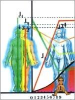 При новом воплощении, Сущность создаёт себе физическое тело, параллельно с этим идёт развитие и «тонких» тел… (иллюстрация из книги Николая Левашова «Последнее обращение к Человечеству»)