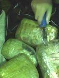 Наркоторговцы - это убийцы сотен тысяч русов!
