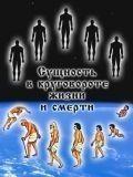 Мы живём миллионы лет и регулярно воплощаемся в физические тела...