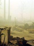 После пожара в подмосковье летом 2010 года