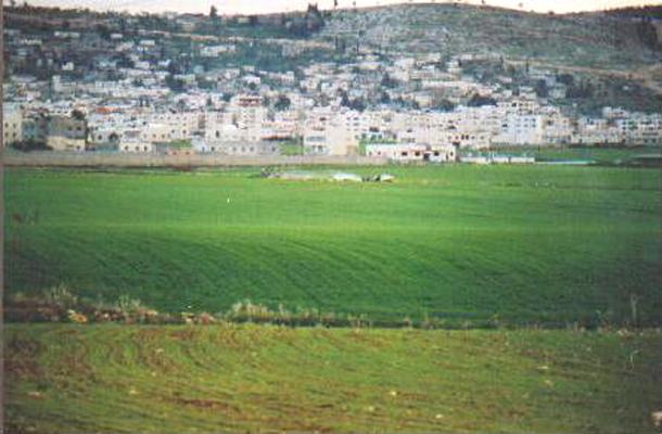А так Дженин выглядел со стороны поля, которое видно на дальнем плане первого снимка