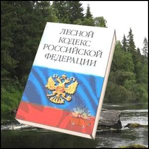 Россию поджигают чиновники