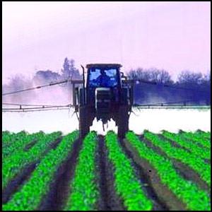 Пестициды – мина замедленного действия