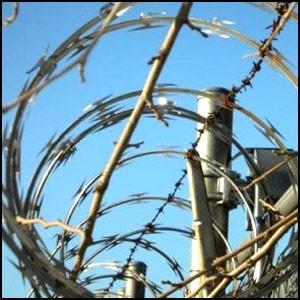 Апогей демократии – тюрьма!