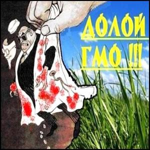 Причиной неурожая в Сибири стали… ГМO