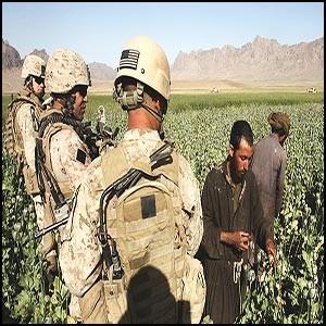 Сионистская мафия производит героин в Афганистане с большим размахом