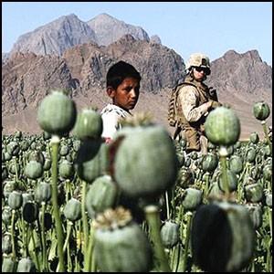 США создало в Афганистане крупнейшее в мире производство героина