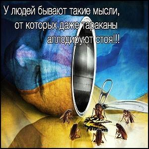 С «европой» украинцев обманули точно так же, как и другие славянские народы