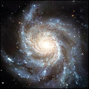 Современная «наука» служит для сокрытия от нас настоящих знаний