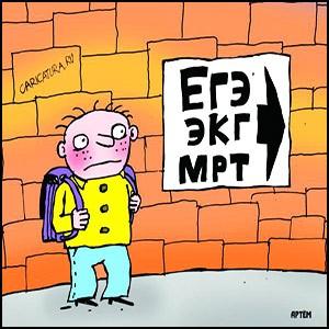 Европейское образование не даёт знаний, а превращает детей в разумных животных