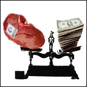 Торговля человеческими органами – очень прибыльный бизнес паразитов