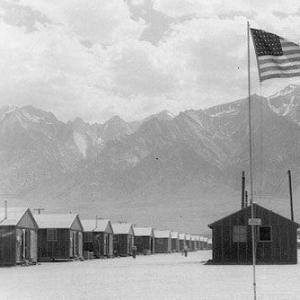 Американский ГУЛАГ: Рузвельтовские массовые репрессии в США