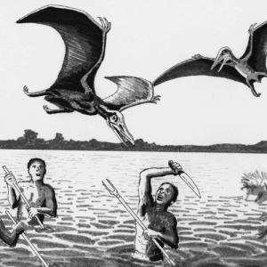 Динозавры – ровесники человека