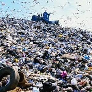 Свалка «Малинки» вместо Балашихинского «Кучино», не решит проблему экологии Москвы