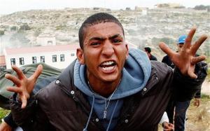 Мигранты в Европе: паразиты-глобалисты уничтожают белую расу
