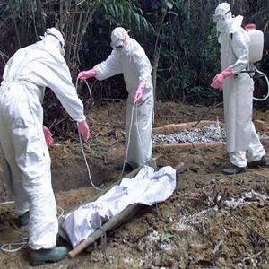 США применили биологическое оружие против Европы в 2011 году