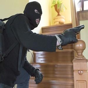 Гастарбайтеры организованной преступной группировки из Молдовы приезжали в Россию грабить богатые дома Подмосковья