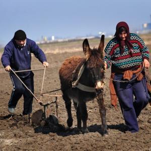 Евросоюз довёл Болгарию до ручки