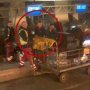 Воровство в аэропорту Внуково поставлено на поток, а «чемоданная мафия» имеет очень высоких покровителей