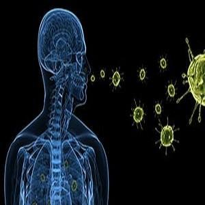 Мозг и кишечник имеют неразрывную связь