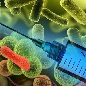 Вакцины настраивают иммунитет против нас