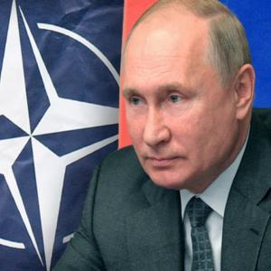 Путин победил НАТО без войны