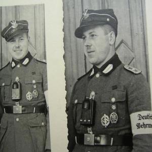 Польша и Германия были союзниками во Второй мировой войне, о чём говорят факты и цифры