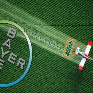 Распространитель ГМО «Монсанто» проиграл в американском суде