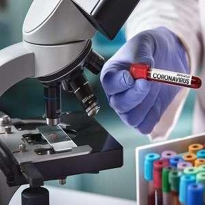 Тест для COVID19 не работает, он бесполезен и выдает ложные результаты