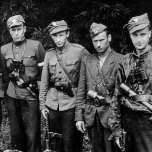 Польская Армия Крайова и нацисты против СССР