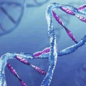 Женщины против ДНК-теста на отцовство
