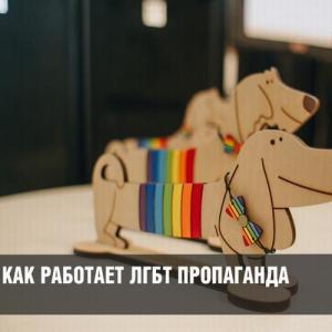Пропаганда гомосексуализма стремительно уничтожает население