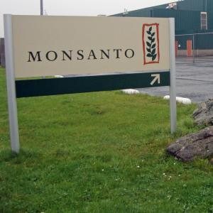 Тёмные тайны транснациональной компании «Монсанто»