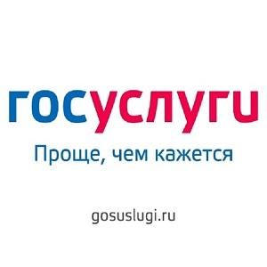 Виртуальное государство – Россия, государственные услуги передадут частным лицам