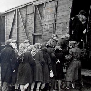 Правда о законе об обязательной эвакуации или депортации населения России