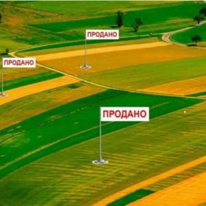 Украину паразиты превратили из промышленно развитой страны в сельскохозяйственный придаток для Запада