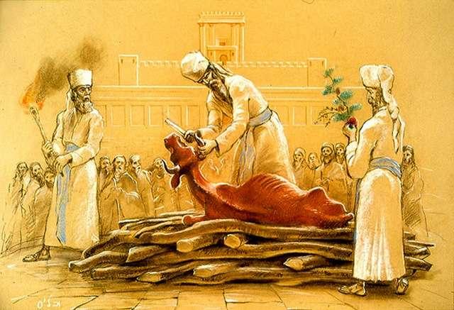 Религия – это не развитие, не православие и не духовность. Религия – это обман. Библейские картинки. Часть 8