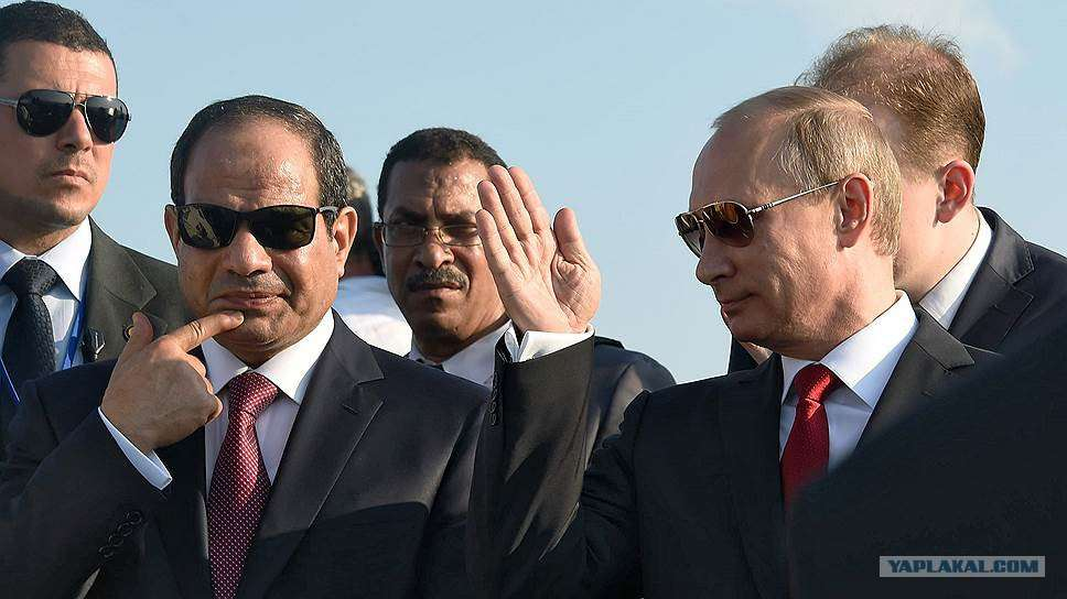 Египет, как и все остальные, хочет от России защиты от паразитов