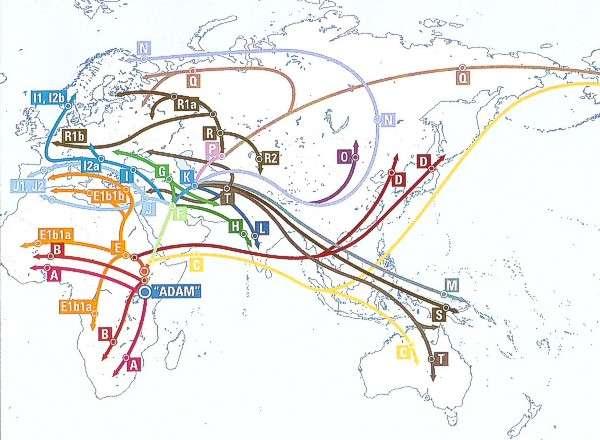 Где родина славян? Кто такие индоевропейцы?