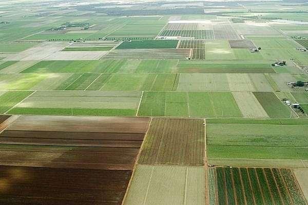 На гектаре в чистом поле выжить невозможно! Это диверсия против русов