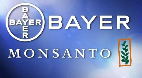 Monsanto и Bayer – убийцы Человечества ГМ-оружием