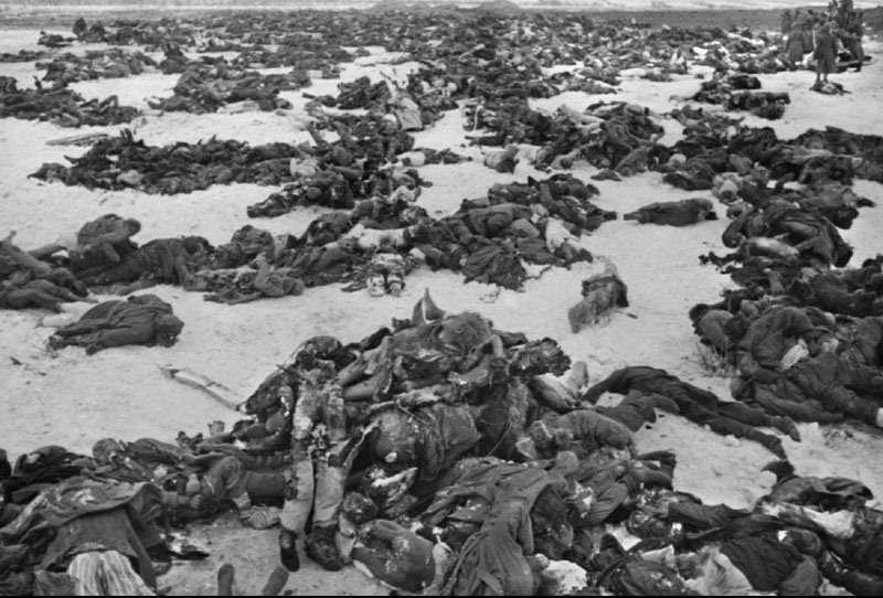 Сталинградская битва: предпосылки, кратко о событиях и неизвестных фактах крупнейшего сражения в истории