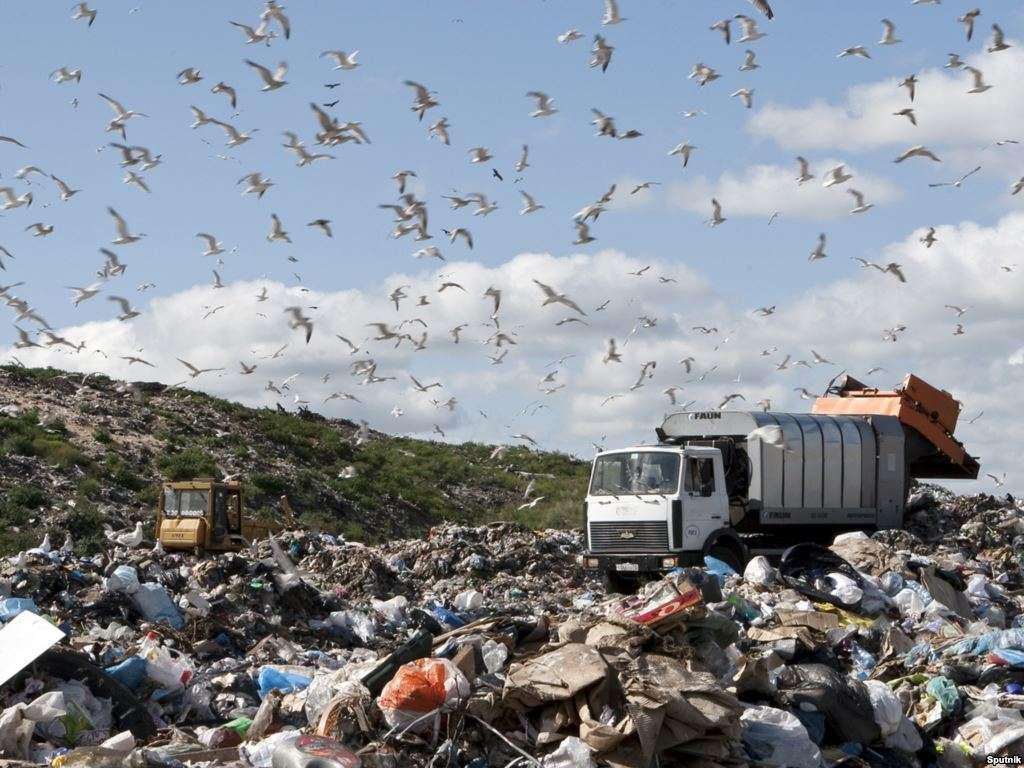 Прокуратура официально курирует мусорный бизнес
