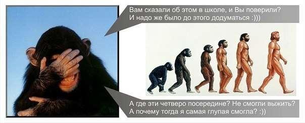 Путь из обезьян в люди…