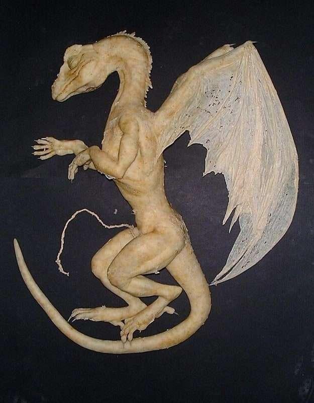 детеныш дракона