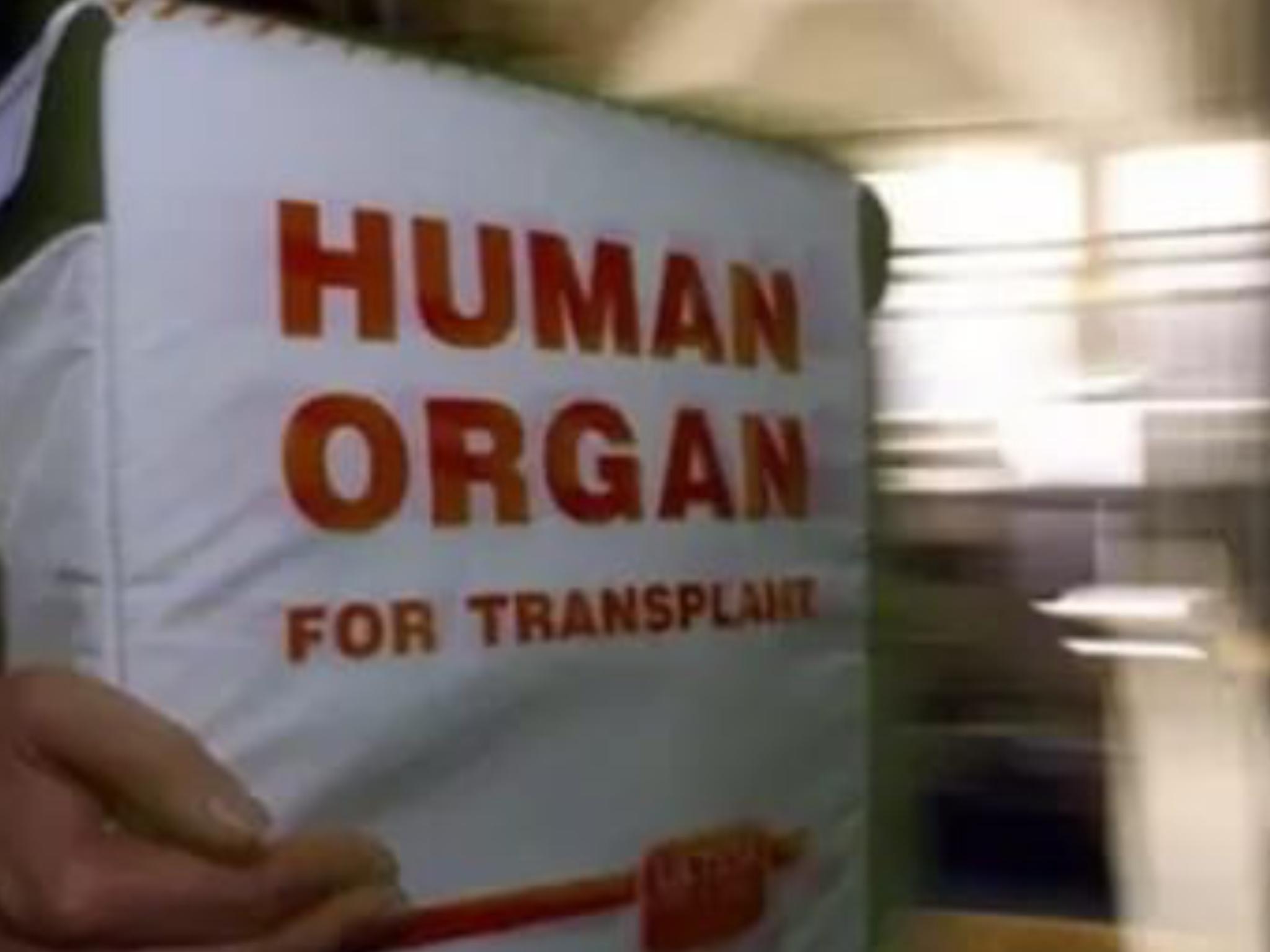 Евреи занимаются чёрной трансплантологией по всему миру