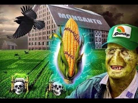 Безмозглые капиталисты с помощью ГМО и химикатов убивают нашу цивилизацию