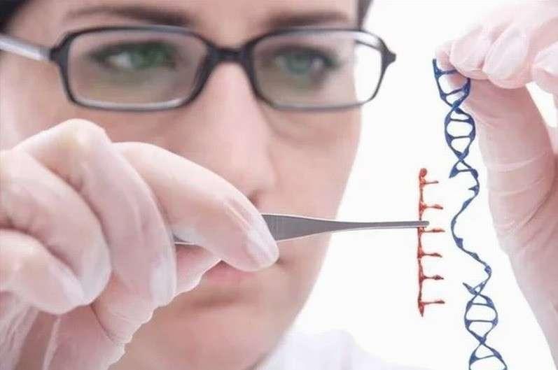 ГМО – это биологическое оружие замедленного действия